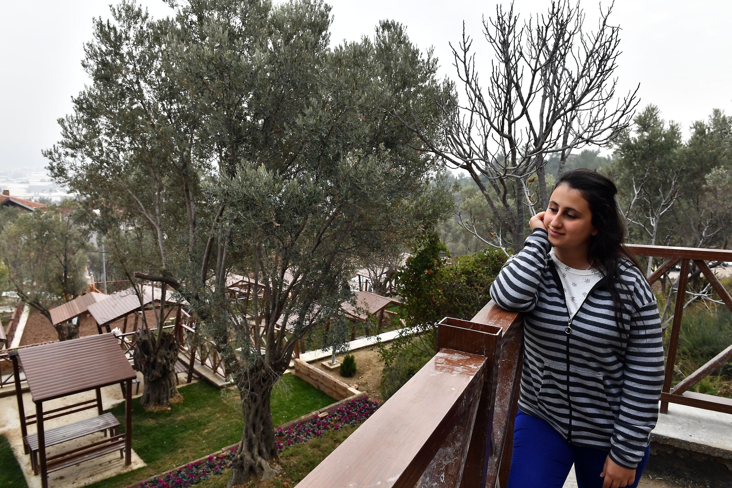 ce6e0edbd23e7 10 adet çeşme ve taşınabilir büfenin de yer alacağı Zeytin Park, bölge  sakinlerinin h er ihtiyacına cevap verebilecek.